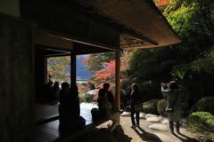 紅葉の吉水園Ⅱ