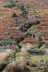 紅葉の比婆山Ⅱ