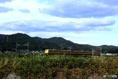 117系 普通列車