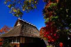 茅葺屋根のある紅葉風景...