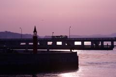 春の漁港散歩 ②