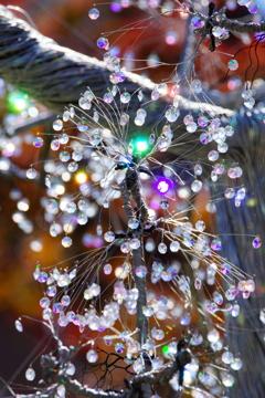 煌く箱根の光の中で~箱根ガラスの森美術館~