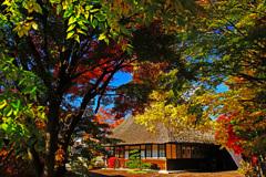茅葺屋根のある紅葉風景...③