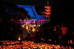 真夏の竹灯籠 ⑧
