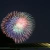 神奈川新聞花火大会 港の見える丘公園 8/4 DSC04030