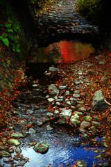 青空と紅葉の色合いを~もみじ回廊