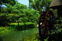 グリーンの清流と水車小屋 ②