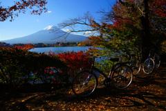 紅葉狩りサイクリングも良いもんだね...