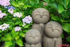flower ~鎌倉散歩~