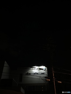 夜間撮影  1