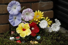 花 その115