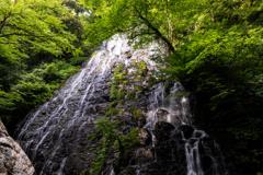 福井の百選滝