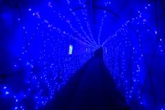 青のトンネル