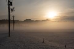 民家の隣で見た朝の光景