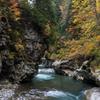 秋の猿飛峡