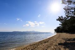 白砂青松の浜