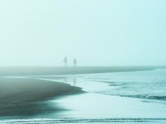 河口の朝霧