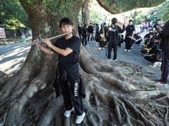 大きな樹の下で聞かせてくれた娘
