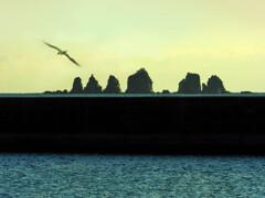 七つ岩(港内から望む)