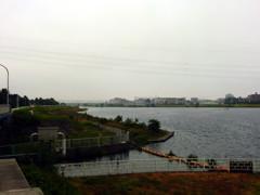 鵜鷺追いし多摩川 #5 もぬけの殻