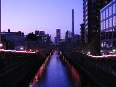 夕風通る目黒川