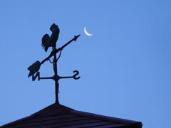 月を狙う風見鶏
