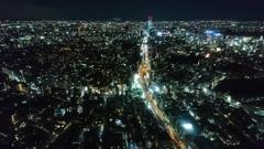 道路 と 渋谷
