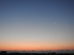 月ーーー金の朝