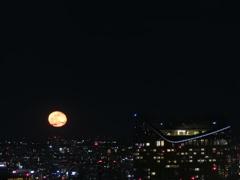 月の出とプライベート空中庭園