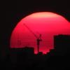 太陽ドーム建設中