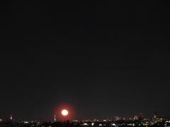 三が日の東京