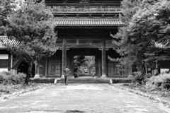 萩 東光寺にて