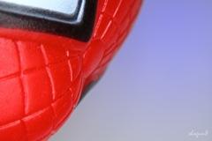 蜘蛛男を撮る。〔家撮〕