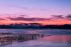 寒い朝の牡蠣棚