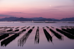 月光の牡蠣棚