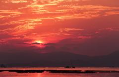 朝焼けの牡蠣筏
