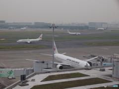 あ。あれは!〜羽田空港第一ダイジェスト[2015.10.10]