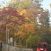 秋色ステーション