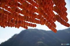 干し柿の里3