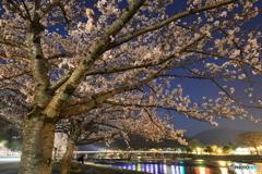 夜桜と渡月橋