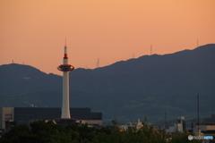 夕日が灯る 京都タワー