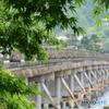 新緑の間から見える渡月橋