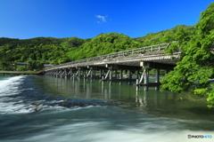 新緑の季節 渡月橋を眺める