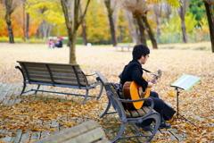 落ち葉のギター弾き