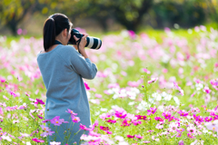 コスモス畑とカメラママ #4
