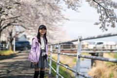 桜の遊歩道 #3