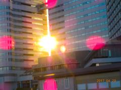 夕日と高層ビル群