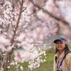 桜のムコウ