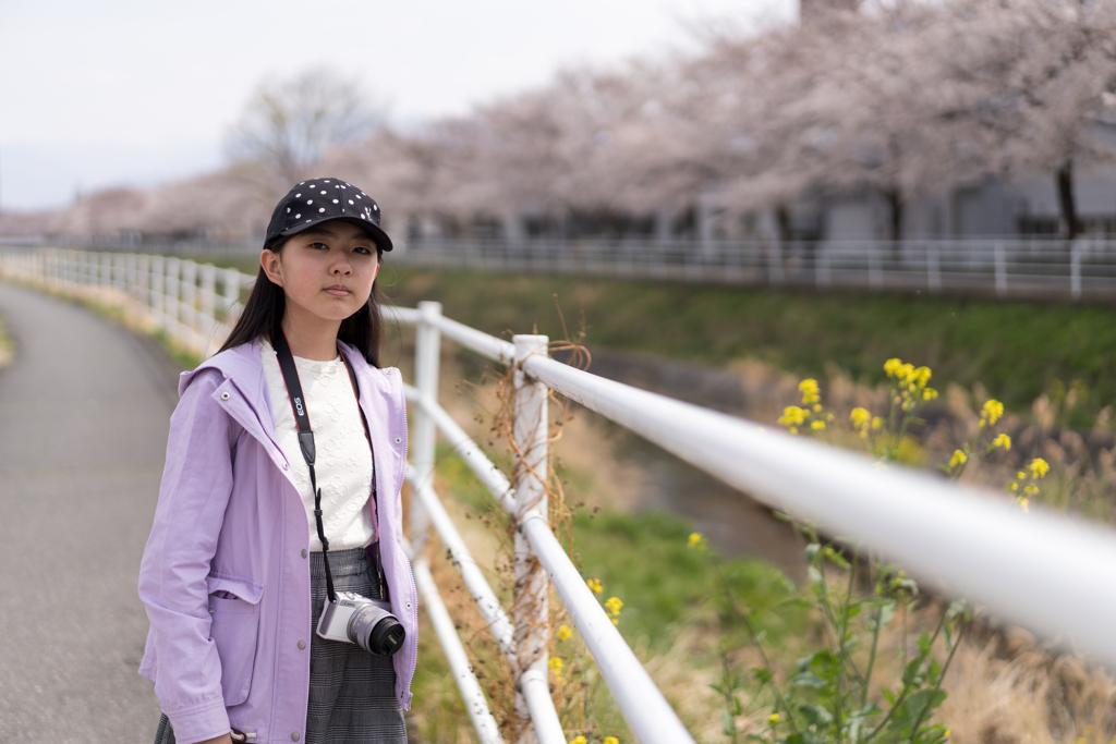 桜の遊歩道 #2