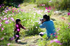 コスモス畑とカメラママ #2